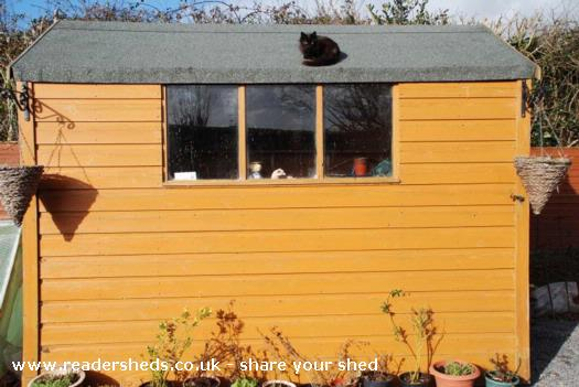 Photo of Bredas shed, entry to Shed of the year-Front view
