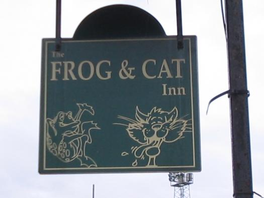 Photo of Frog n cat, entry to Shed of the year-frogncat pub sigin