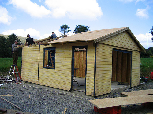 Photo of Too new, entry to Shed of the year-Trusses and roof