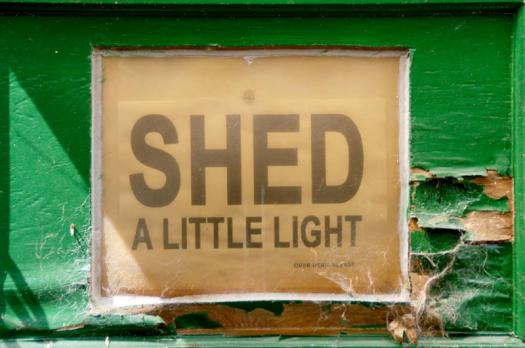 Shed A Little Light