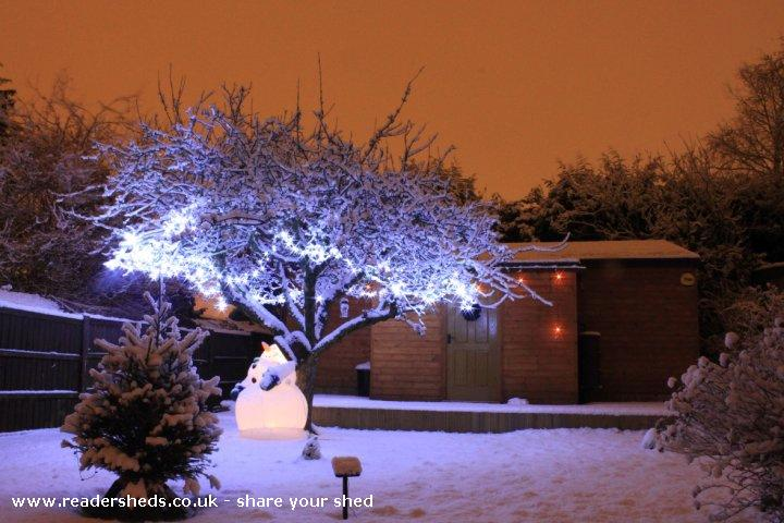 Photo of reelwood, entry to Shed of the year-frosty says hi