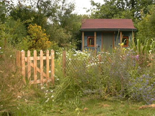 Photo of The Shed, entry to Shed of the year-High Summer