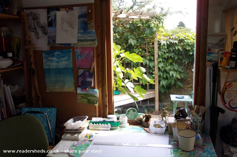 Photo of Anne's toy, entry to Shed of the year-side window