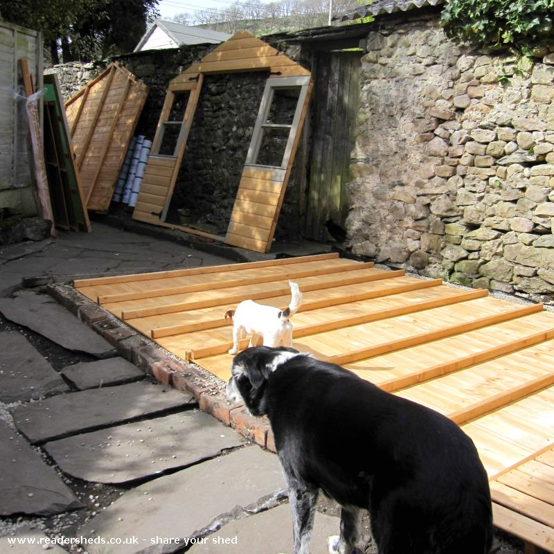 Photo of the home of ted & agnes..., entry to Shed of the year-there's some sort of dog supervising going on