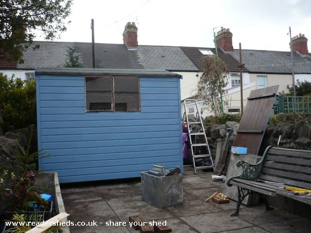 Photo of Mini Jeff, entry to Shed of the year-Shed painted blue