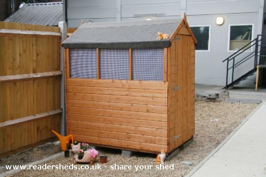 shed show