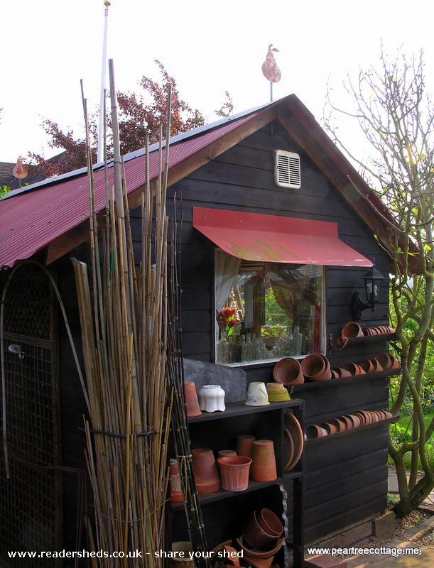 Photo of 'The Studio', entry to Shed of the year-Useful end of the studio