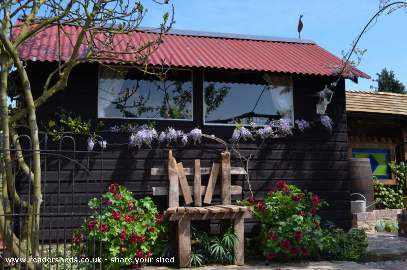 Photo of 'The Studio', entry to Shed of the year-Pelargoniums & Wisteria in bllom