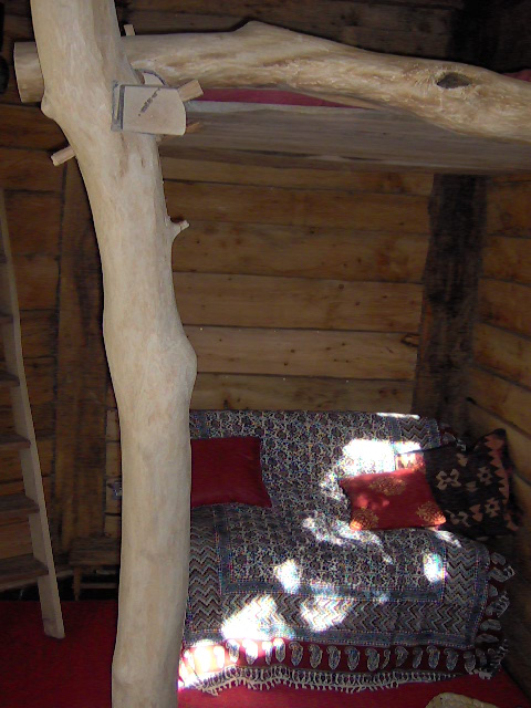 Photo of housetree, entry to Shed of the year-