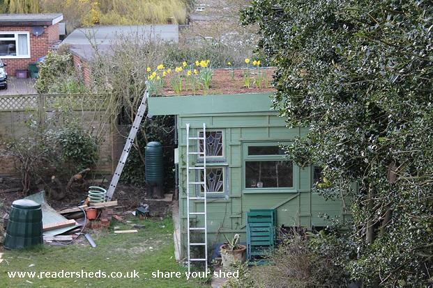 The Hangar - Martin Brown - Garden