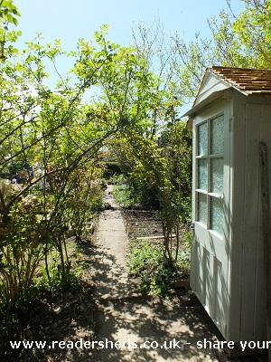 Shabby 3 door shed