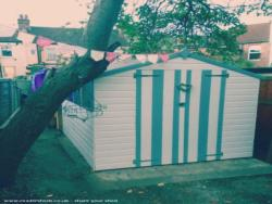 Suzy's beach hut shed - Suzan Karafistan  - Back of the garden
