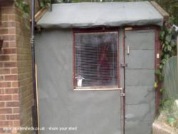 the shed  - lee jordan