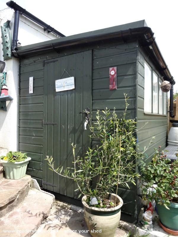 Carol's Seaside shed - Carol Gould - Back garden