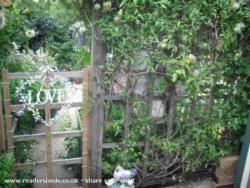 Queen of Wales' Castle - sue farquhar - garden