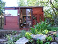 The Cyncoed Fine Art Studio - Penelope Rose - Back of Garden