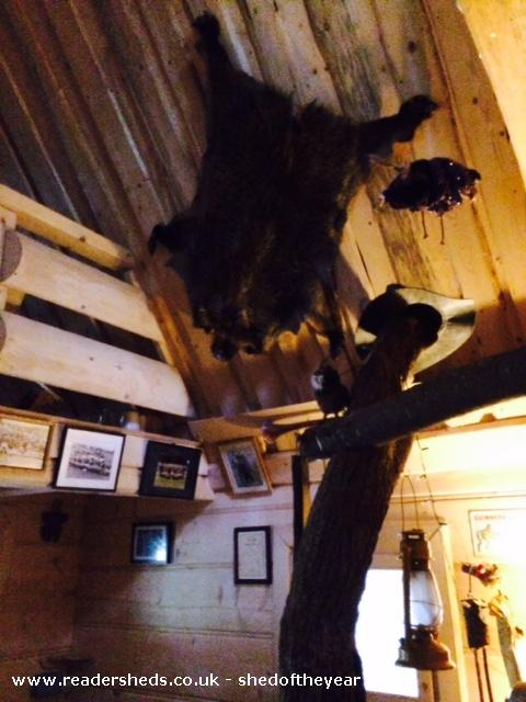Photo of The Hooting Owl, entry to Shed of the year-One of many sheepskins inside The Hooting Owl