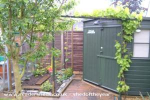 Steampowered - Peter Meadows - Corner of garden