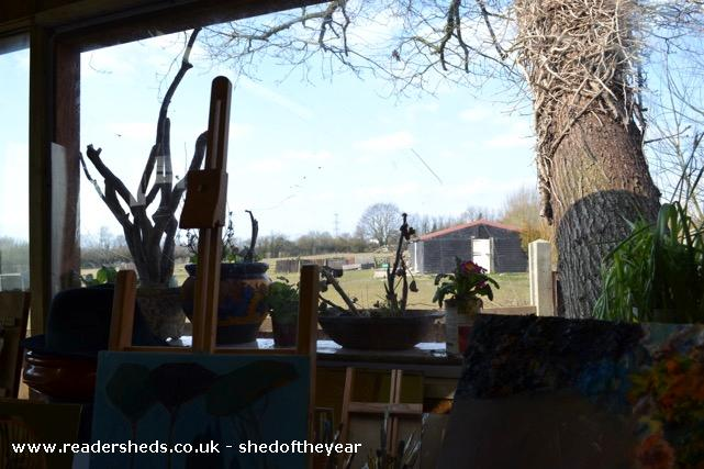 Photo of Shedio, entry to Shed of the year