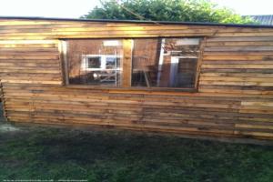 the pallet shed - Peter Middleton - in back garden