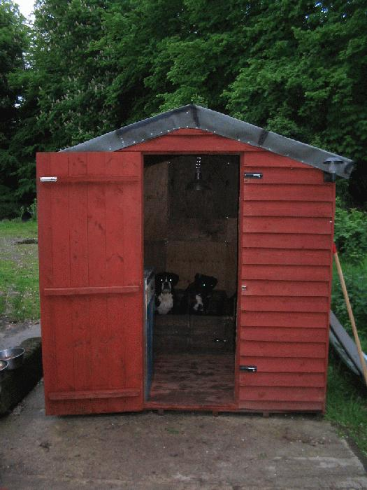 The Girls Shed