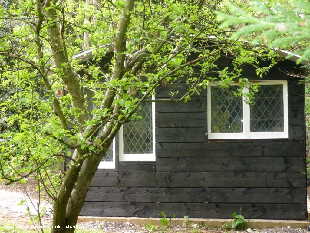 Shou-sugi-ban shed - John Tracey - Garden