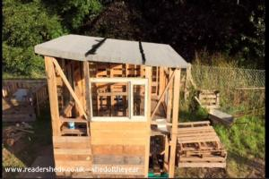 The Shed - Mark Hill - Allotment