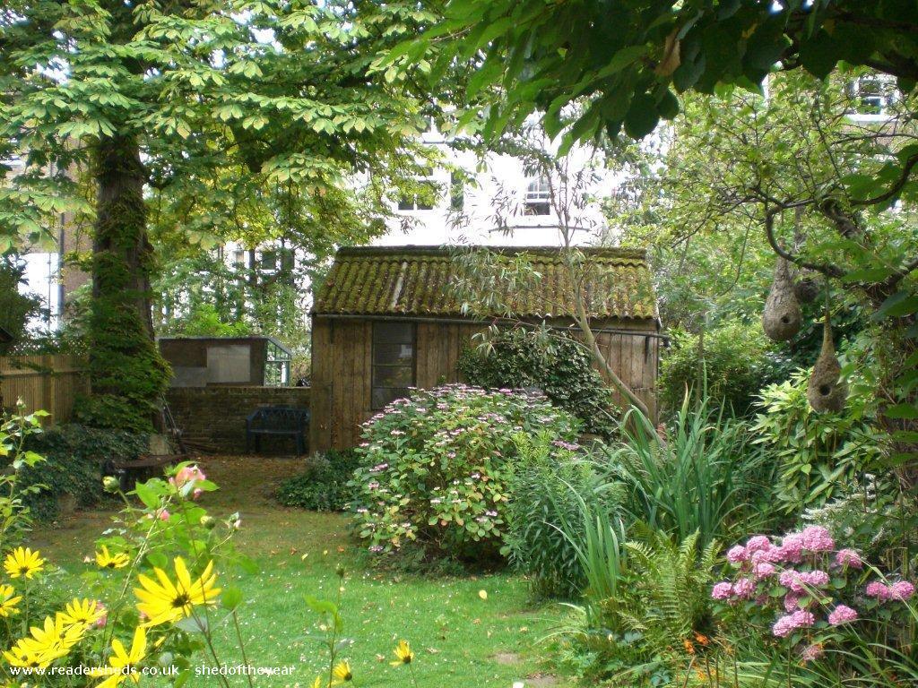 Barbara's Studio - Barbara Foster - Garden