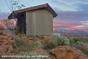 Desert frog pad - Dan Schweitzer - backyard - desert