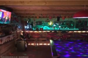 Haliwaves tiki bar - Mal Halifax - Garden