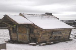 love shack - Allan robinson - field