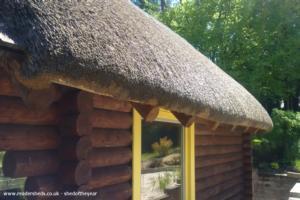 Shrek's Cabin - Michael Dutton - Garden