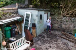 Susan's Funky Workshop - Dougi McMillan - Walled-Back Garden