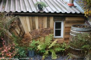MENTAL HQ - david nicks - Back Garden