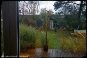 The Shed - Angela Dickson - Garden