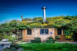 Love Shack Argentum - Martin Newman - Corner of back garden