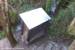 Mini eco-cabin in the woods - tim - End of garden