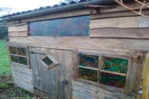 Lottie's shed - Lottie Lands - Allotment
