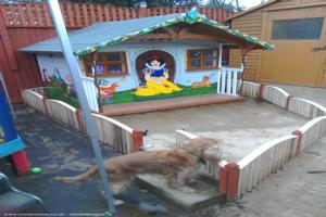The seven dwarfs cottage - Simon Pannell - grandad - Garden