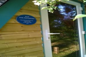 The Peppermid - Shaun Pepper - garden