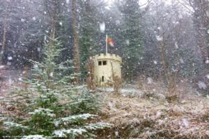 The Castle of MOB - Gordon Langton - Woodland
