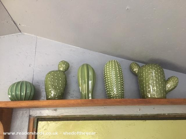 Photo of Dignity, entry to Shed of the year-ceramic cacti collection