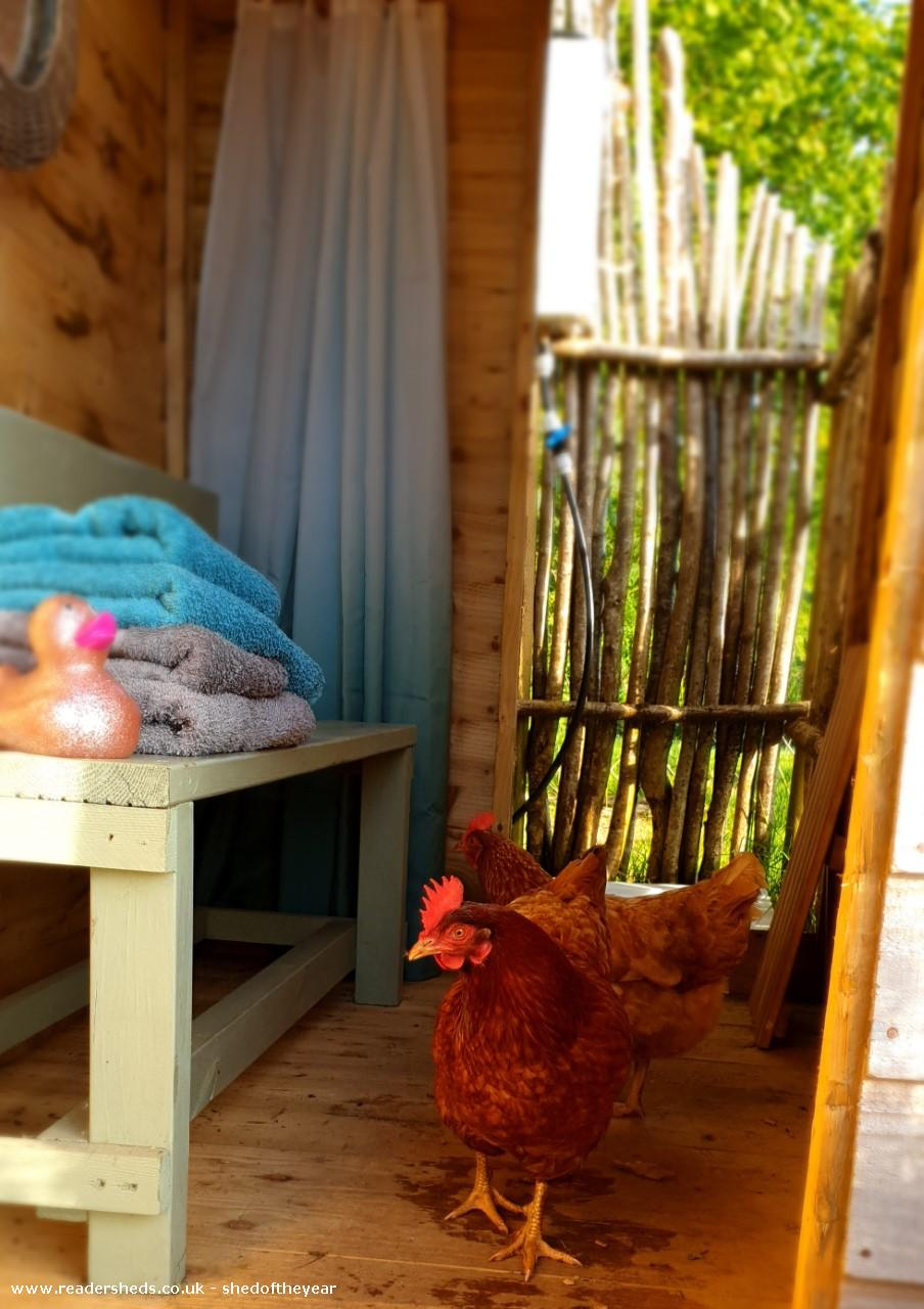 Photo of Al Fresco Shower Shed, entry to Shed of the year-Nosy chickens