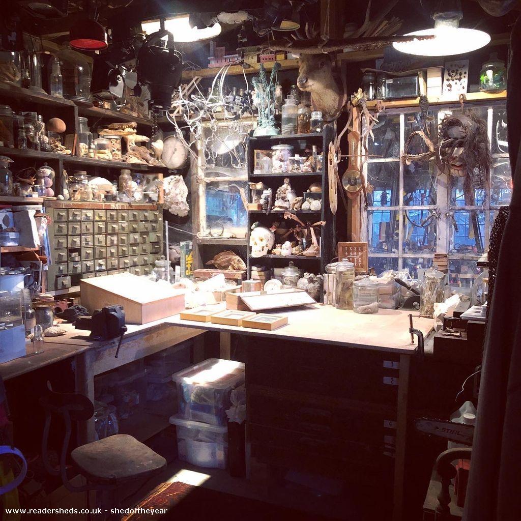 Art Studio Shed