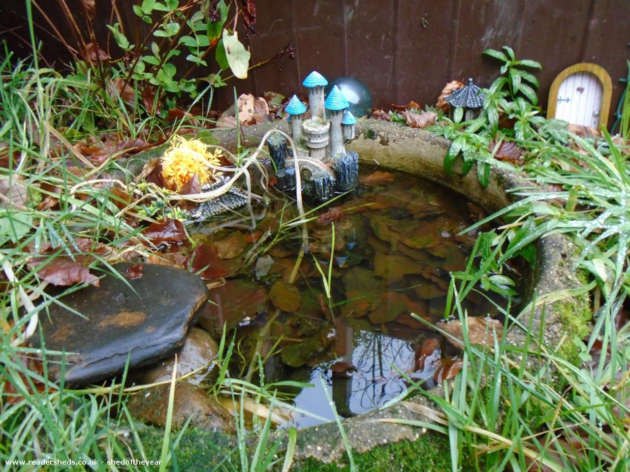 Photo of Ellie's Den, entry to Shed of the year-Frog's pond