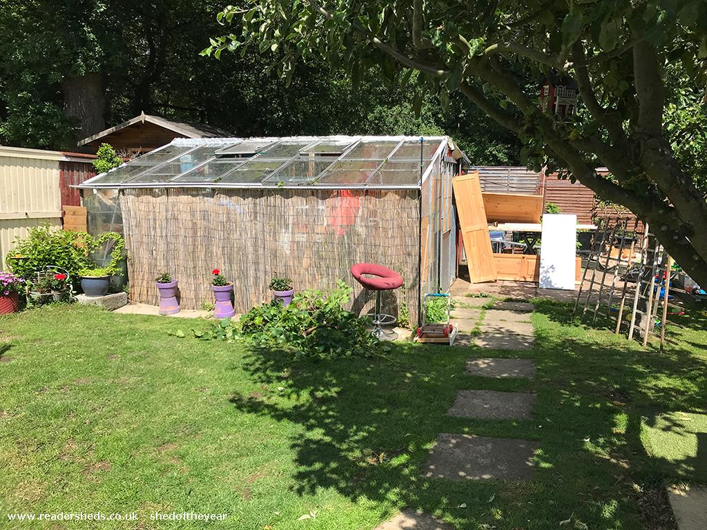 Photo of The Yoga Cabin, entry to Shed of the year-in the beginning....