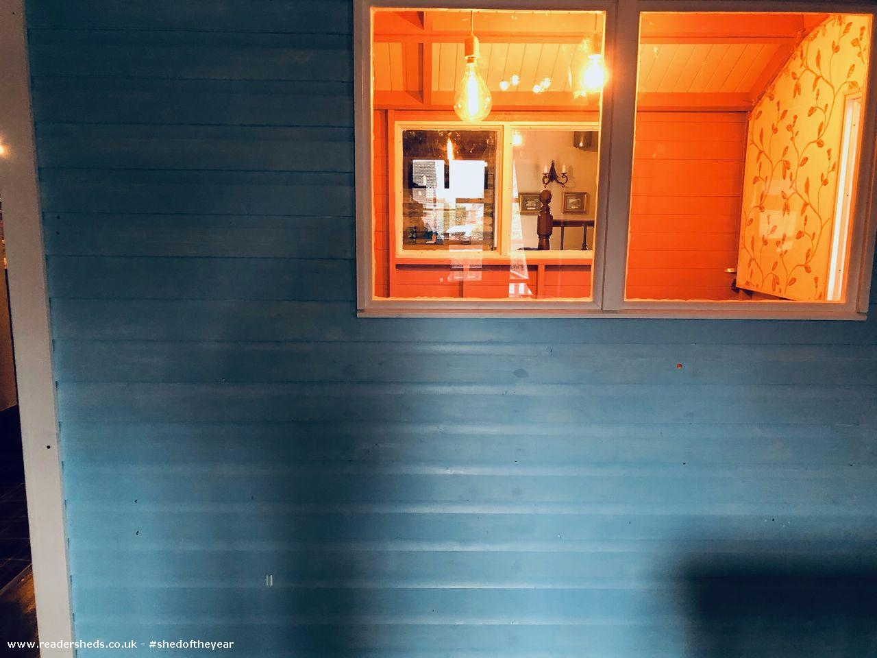 Photo of Bombay Blue, entry to Shed of the year